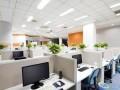办公室装修污染 味道很浓怎么办?